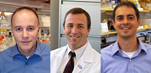 Peter Storz, MD, David Dawson, MD, PhD, and Nabeel Bardeesy, PhD